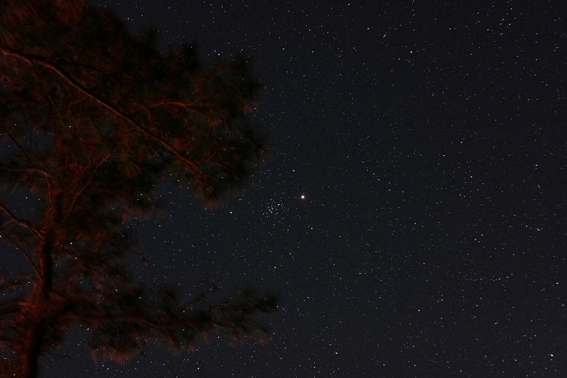 Mars and the Beehive (M44); exp 60 sec; ISO800; Canon 20Da w/ 50mm lens at f/3.2; 4-14-10; Cherry Stone Campground